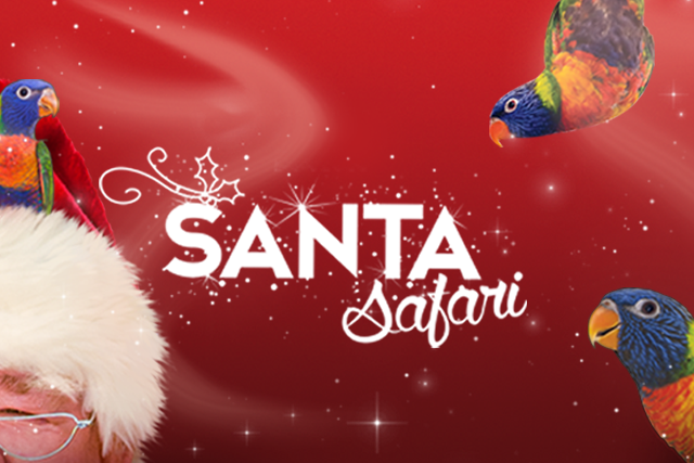 2018-santa-safari-website