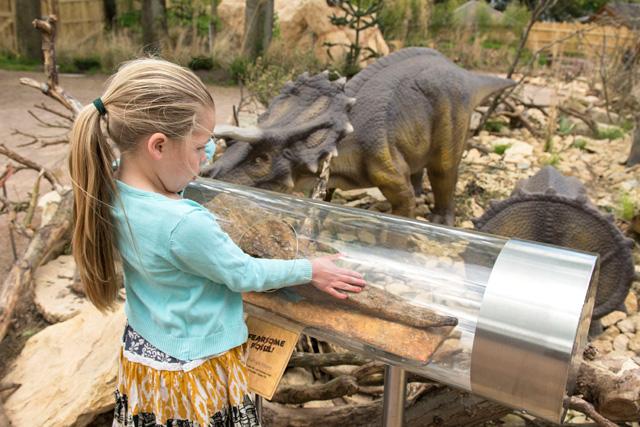 walking safari with dinosaurs
